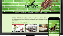patriot-pest-1024x810-1160x917