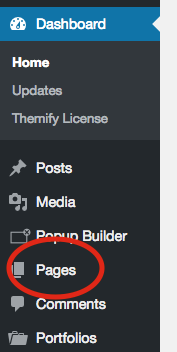 1. From within your dashboard click on pages.